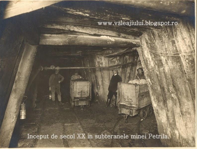 doamna singura caut barbat petrila un bărbat din Drobeta Turnu Severin cauta femei din Sibiu