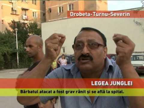 barbati din Craiova cauta femei din Drobeta Turnu Severin fete care cauta barbati din Constanța